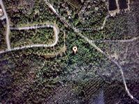 Home for sale: X Otter Creek Rd., Sopchoppy, FL 32358