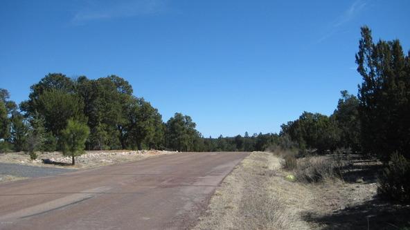 2955 Lodgepole Rd., Overgaard, AZ 85933 Photo 26