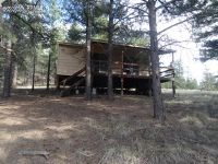Home for sale: 80 Crystal Ln., Lake George, CO 80827