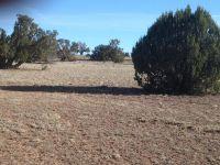 Home for sale: 136 Stockmans Rd., Ash Fork, AZ 86320