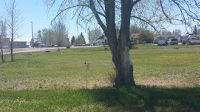 Home for sale: Lot 1 Tbd Lemhi Ave., Richfield, ID 83349