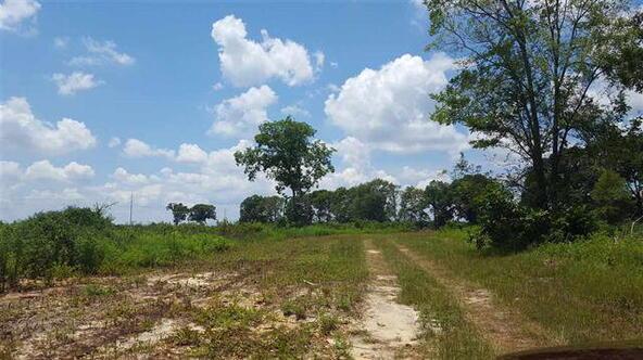 Tbd County Rd. 40, Coffee Springs, AL 36318 Photo 20