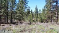 Home for sale: Lot 2 Idaho City Estates, Idaho City, ID 83631