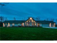 Home for sale: 6694 Christine Ln., Fort Gratiot, MI 48059