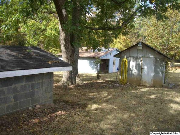 7575 County Rd. 42, Fackler, AL 35746 Photo 28