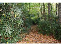 Home for sale: Sr #1101 Fork Creek Rd., Saluda, NC 28773