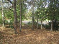 Home for sale: 169 Flintside Dr., Cobb, GA 31735