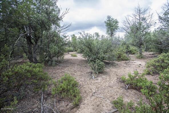 509 N. Chaparral Pines Dr., Payson, AZ 85541 Photo 28