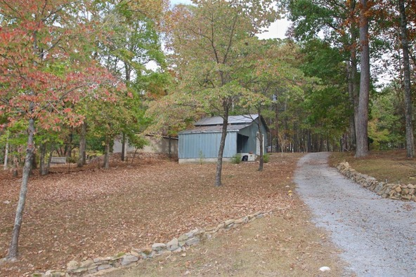 301 County Rd. 173, Crane Hill, AL 35053 Photo 16