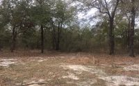 Home for sale: Tbd N.W. 37th Blvd., Jennings, FL 32053