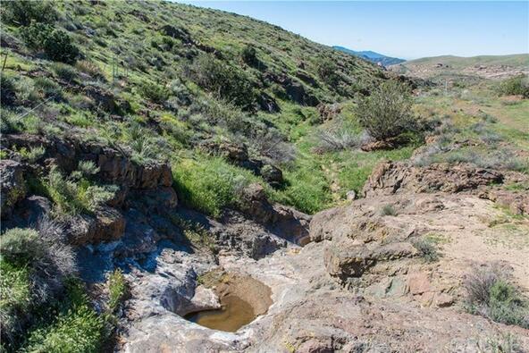 15 Vac/Vic Deerglen Ln./1/4 Mi S. E., Agua Dulce, CA 91350 Photo 31