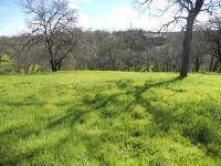 Home for sale: 21811 Eagle Peak Dr., Cottonwood, CA 96022