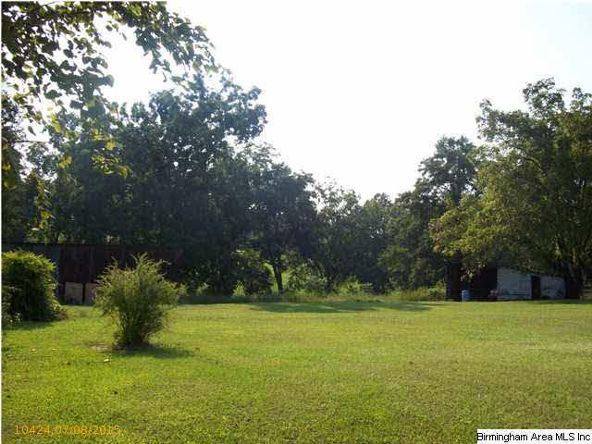 25541 Hwy. 31, Jemison, AL 35085 Photo 31