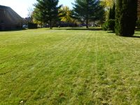 Home for sale: Lot #1 Sycamore Avenue, Medinah, IL 60157