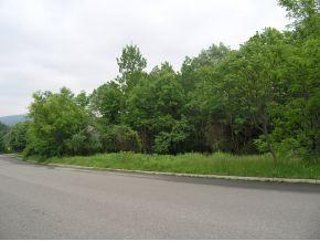 19 Coventry Rd., Endicott, NY 13760 Photo 2