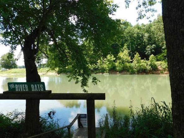 291 Heron Trail, Imboden, AR 72434 Photo 15