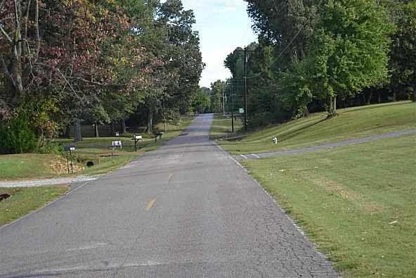 00 Sanders Bluff, Three Way, TN 38343 Photo 4