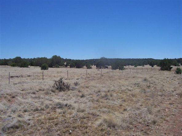 56731 N. Potrero Parkway, Seligman, AZ 86337 Photo 11