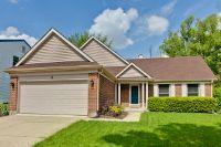 Home for sale: 4 Monterey Dr., Vernon Hills, IL 60061