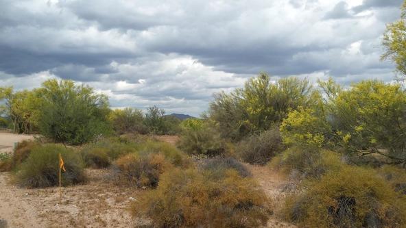163 E. Dixileta Dr., Scottsdale, AZ 85262 Photo 6