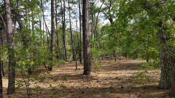 2702 Lockwood Dr., Lakeside, AZ 85929 Photo 1