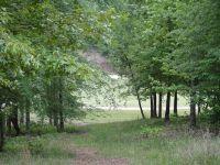 Home for sale: Lot A-15 Mount Vintage Plantation Dr., North Augusta, SC 29860