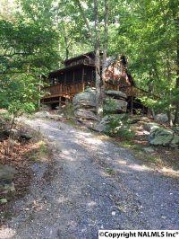 Home for sale: 163 County Rd. 600, Mentone, AL 35984
