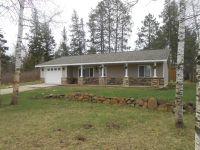 Home for sale: 742 6th Ln., Menahga, MN 56464
