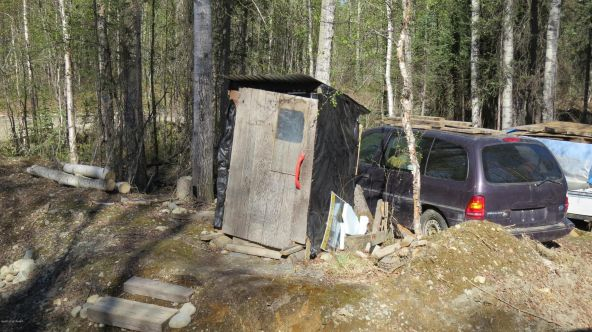 48973 N. Silver Salmon Dr., Willow, AK 99688 Photo 3