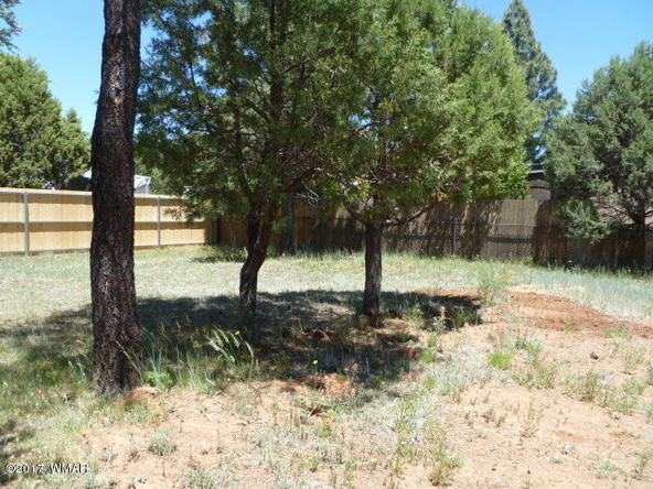 3160 E. Larson Way, Show Low, AZ 85901 Photo 21
