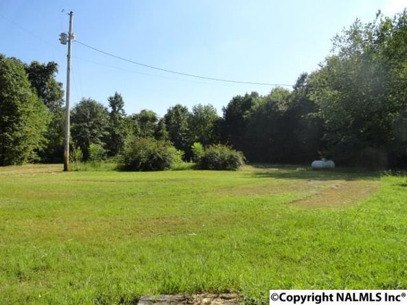 5219 Alabama Hwy. 40, Dutton, AL 35744 Photo 4