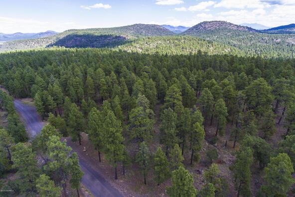1729 S. Pine Ridge Dr., Williams, AZ 86046 Photo 8