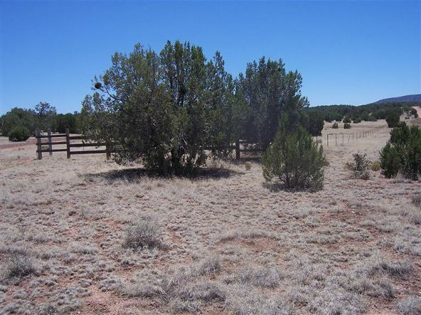 56731 N. Potrero Parkway, Seligman, AZ 86337 Photo 3