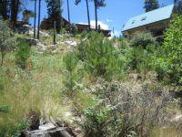 Home for sale: 12801 N. Tucson Ave., Mount Lemmon, AZ 85619
