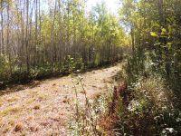 Home for sale: Lot 10e Coyote Ridge, Grand Marais, MN 55604