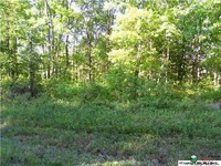 Home for sale: 445 County Rd. 707, Cedar Bluff, AL 35959