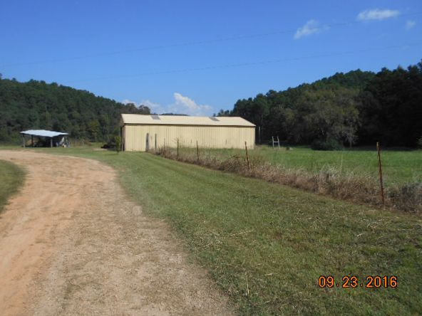 473 Polk Rd. 675, Mena, AR 71953 Photo 21