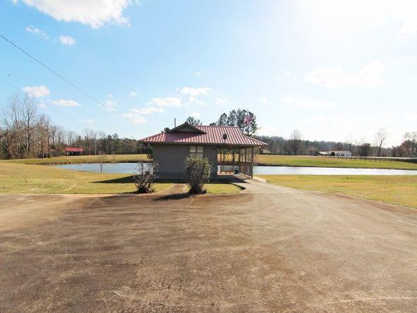 3510 Colburn Mill Rd., Littleville, AL 35653 Photo 19