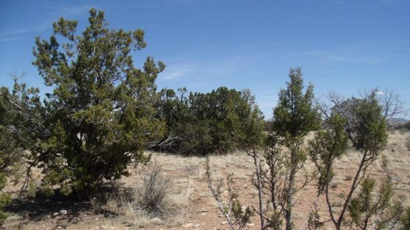 6376 W. Fire Sky Trail, Williams, AZ 86046 Photo 10