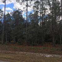 Home for sale: Lot 632 Village Green Dr. N.E., Shellman Bluff, GA 31331