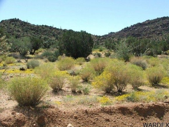 3578-B E. Desert Willow Dr., Yucca, AZ 86438 Photo 5