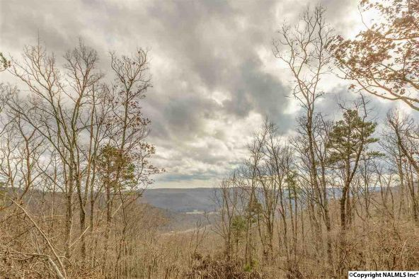 9 South Bluff Trail, Huntsville, AL 35803 Photo 13