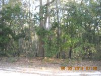 Home for sale: Lot 35 N.E. 756th St., Old Town, FL 32680