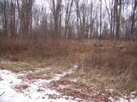 Home for sale: Lot #2 Thorn Apple Dr., Wittenberg, WI 54499