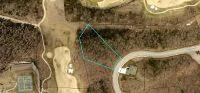 Home for sale: 153 Pinehurst Dr., Branson, MO 65616