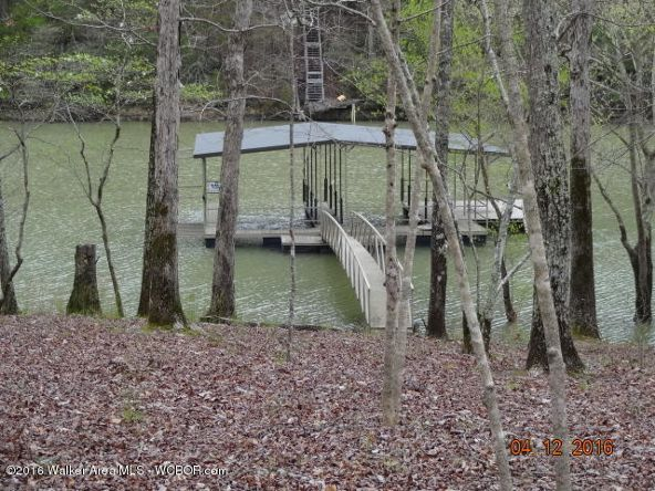 52 Wilderness Ln., Double Springs, AL 35553 Photo 26