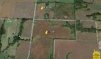 Home for sale: 155 Acres N.W. 500 Rd., Clinton, MO 64735