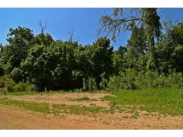 5 Ac Jesse/Esculapia Ln., Rogers, AR 72758 Photo 10