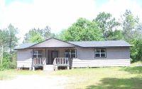 Home for sale: 88 B Lowe Ln., Lumberton, MS 39455