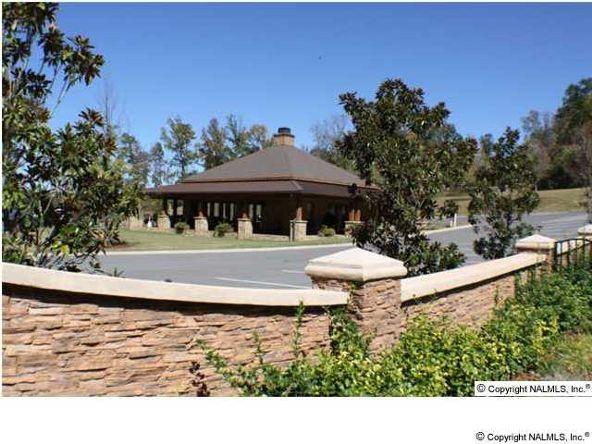166 Lookout Mountain Dr., Scottsboro, AL 35769 Photo 3